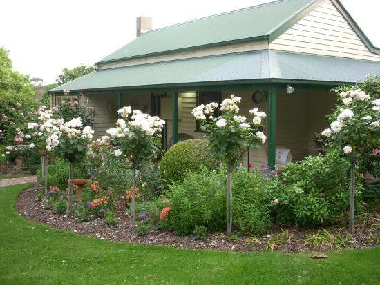 Springbank Bed & Breakfast : Springbank Homestead looking from front carpark
