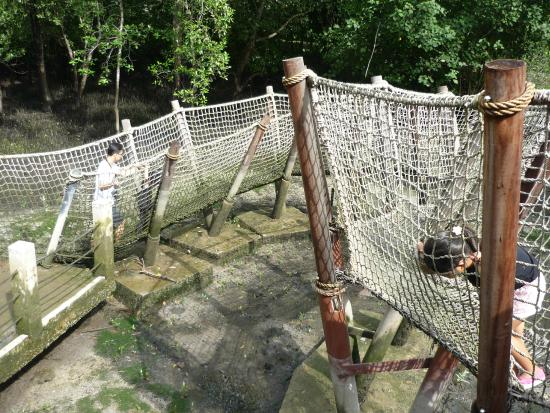 how to go to sungei buloh wetland reserve by bus