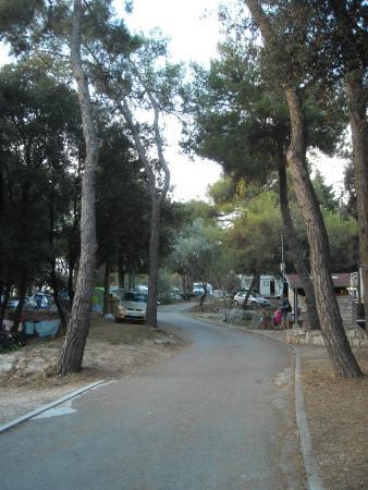 Camping Porton Biondi Rovinj: Vialetto campeggio