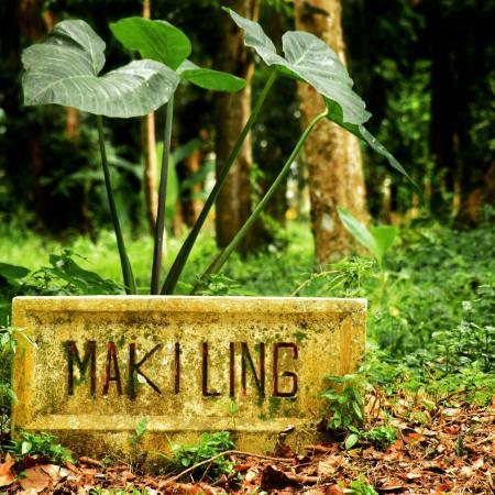 Makiling Botanic Gardens: Makiling Escapade!