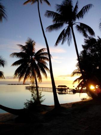 Hotel Les Tipaniers: couché de soleil sur la plage de l'hôtel