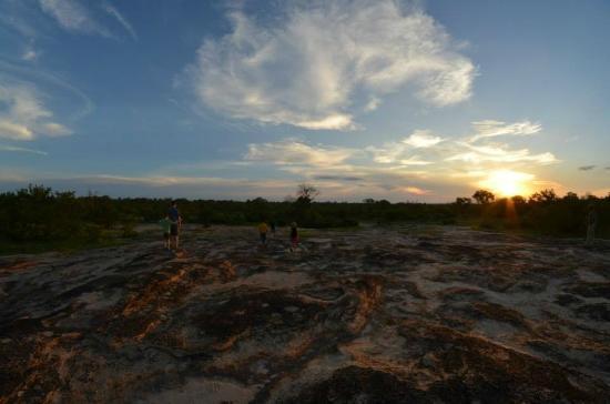 Djuma Game Reserve 이미지