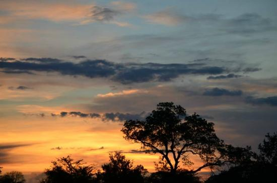 Djuma Game Reserve, แอฟริกาใต้: sunset