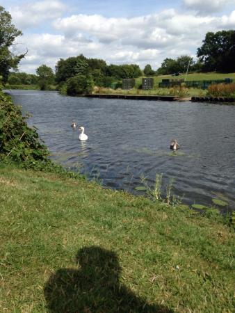 St Nicholas Park Warwickshire
