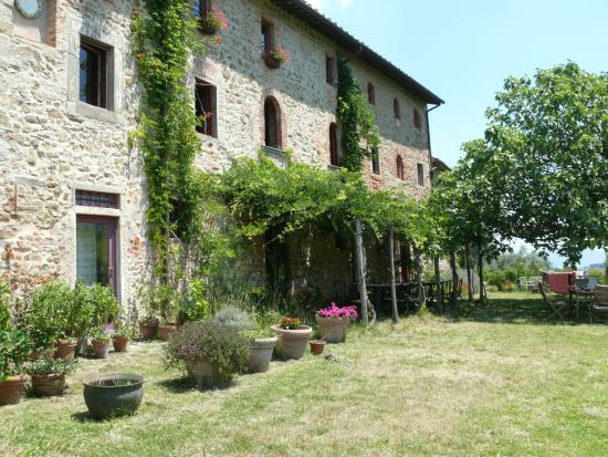 Agriturismo I Pitti: View of the establishment with the wisteria covered terrace.