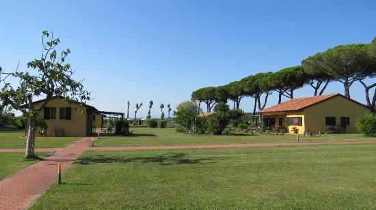 La Fattoria di Tirrenia Country Resort: the garden