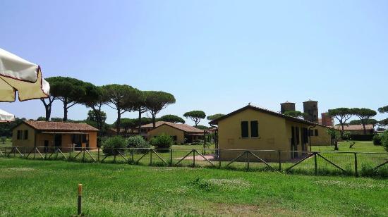 La Fattoria di Tirrenia Country Resort: view from the swimming pool