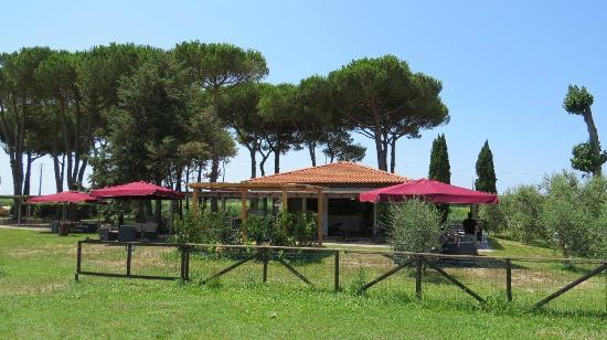 La Fattoria di Tirrenia Country Resort: The bar / restaurant