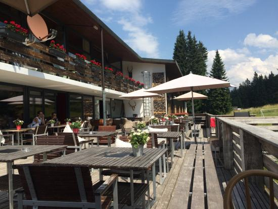 Saanewald Lodge: photo1.jpg
