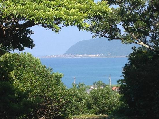 Shinshoji Temple : 本堂からの眺め