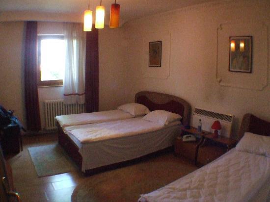 Hotel Alem: Room