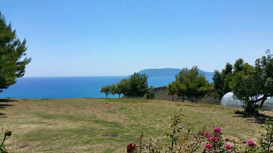 La Sirena Hotel : View from hillside restaurant, Dionisis had details
