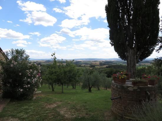 Agriturismo Poggio Bonelli: view from lodging