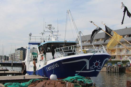 March aux poissons de courseulles photo de office de - Office du tourisme courseulles sur mer ...