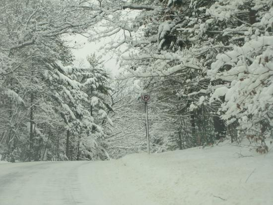 Snug Harbor Resort : Beautiful snowy drive