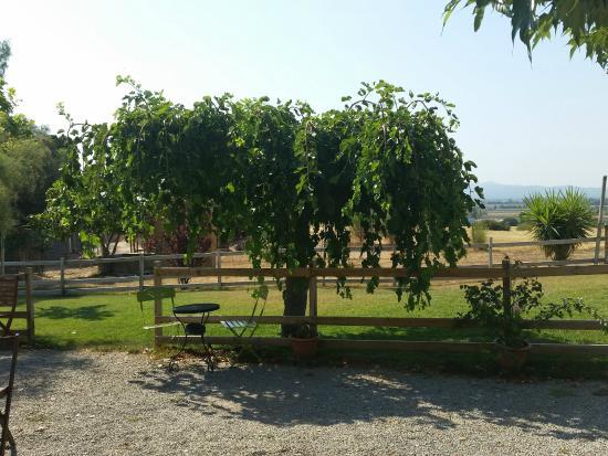 Turisme Rural Mas Ramades: espaces detente