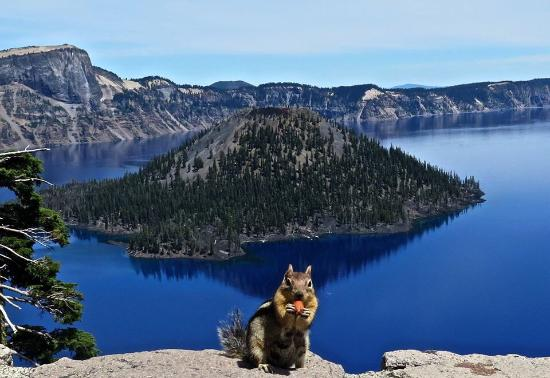 The wonders of Crater Lake.