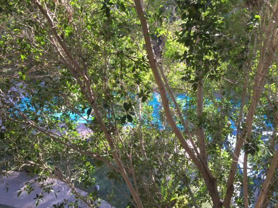 Araiza Mexicali: View of one pool from my balcony