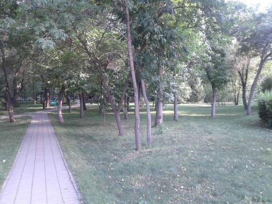Zhambyl Zhabayev Park: Аллея