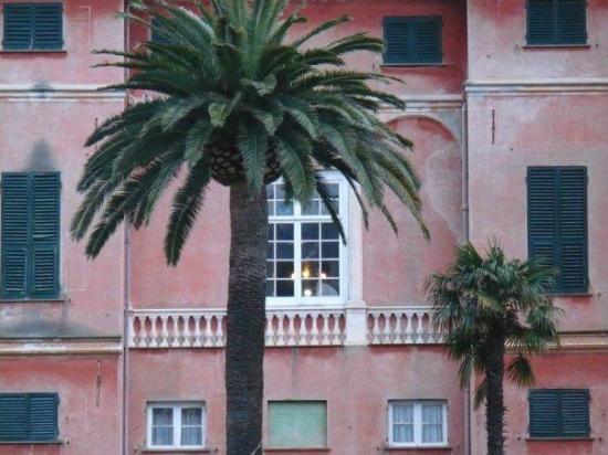 Tripadvisor Hotel Villa Bonera