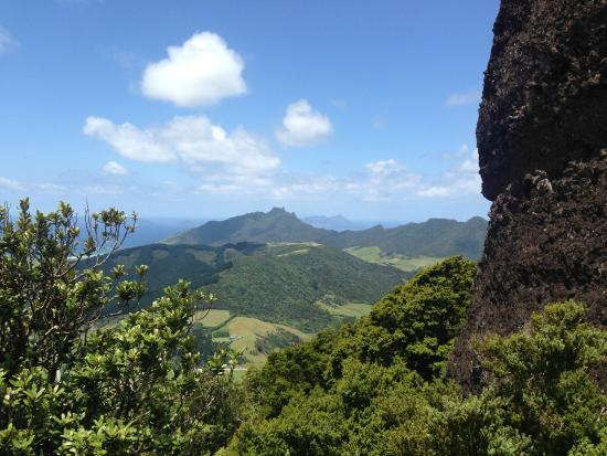Whangarei, Nueva Zelanda: Looking out from Mt Manaia