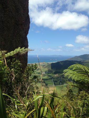 Whangarei, Nueva Zelanda: Lookout from Mt Manaia
