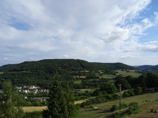 Waldhotel Sonnenberg: View from Balcony