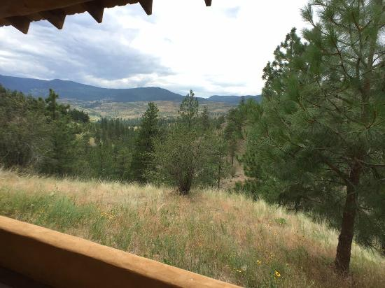 High Chaparral Guest House: View from front deck