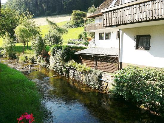 Hotel Hirschen: elzach