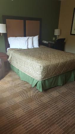 Extended Stay America - Hartford - Meriden : 1 queen bed