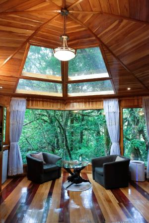 Hidden Canopy Treehouses Boutique Hotel Glade Treehouse2 & Glade Treehouse2 - Picture of Hidden Canopy Treehouses Boutique ...