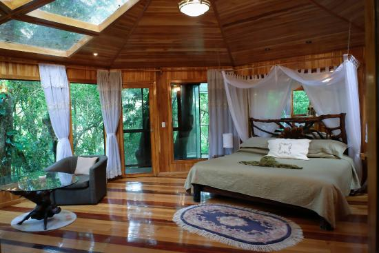 Hidden Canopy Treehouses Boutique Hotel Glade Treehouse3 & Glade Treehouse3 - Picture of Hidden Canopy Treehouses Boutique ...