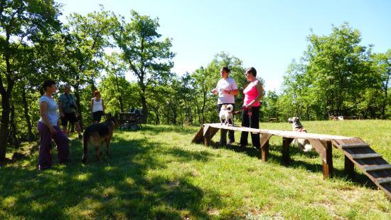 Agriturismo Le Cinciallegre: Nel parco