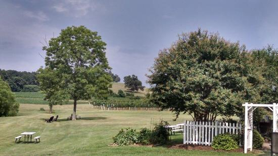 Hamptonville, Carolina del Nord: Laurel Gray Vineyard & Winery