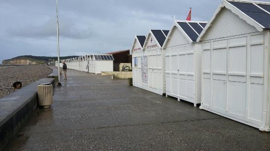Office de tourisme de quiberville sur mer sa ne et vienne - Office tourisme cavalaire sur mer ...