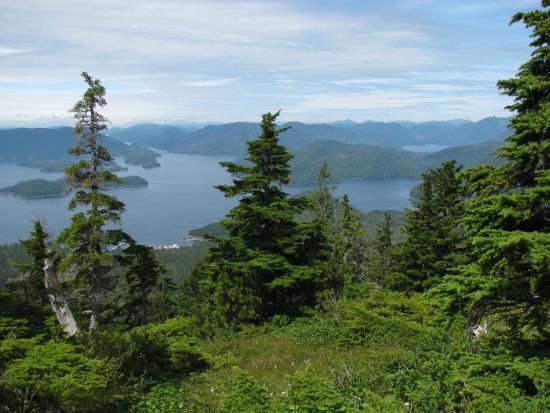 Harbor Mountain Trail: Olga Strait and Katlian Bay from Picnic Area