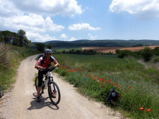 Mountain Biking Valencia   Tours: Sierra de Mariola