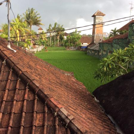 Kori Bali Inn: Rice paddy view