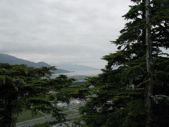 Glacier Gardens Foto De Glacier Gardens Rainforest