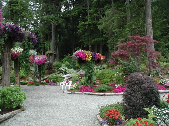 Foto De Glacier Gardens Rainforest Adventure Juneau Some