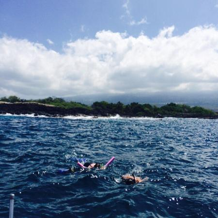 Kona Ocean Adventures: photo0.jpg