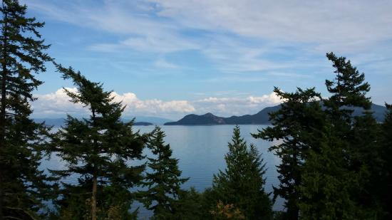 Orcas Island Bayside Cottages: View from the deck