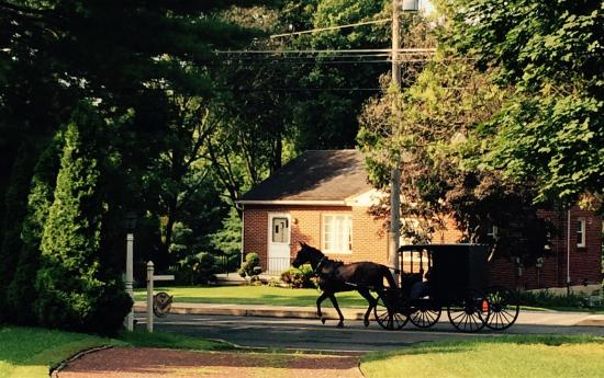 Akron, Pensilvania: Horse and buggies practically in the backyard