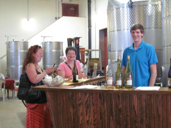 Dayton, OR: Tasting bar in the winery