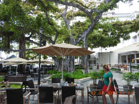 under the banyan tree pdf