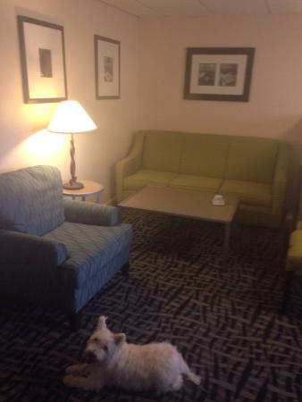 BEST WESTERN Inn & Conference Center: photo2.jpg