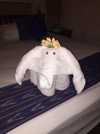 Casa de las Olas: Cutest towel animals!  <3