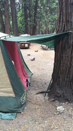Camp 4 : photo0.jpg