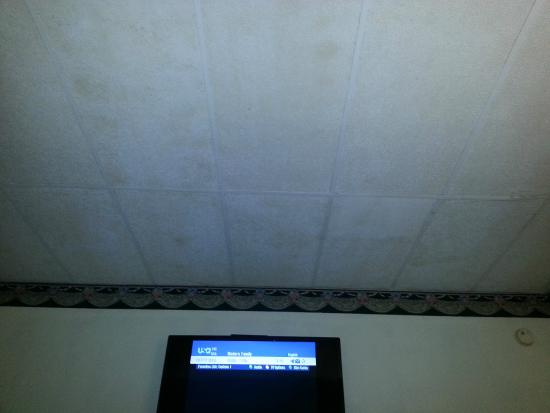 Rodeway Inn Gadsden 1-59 Exit 183: the ceiling was several shades of brown and beige