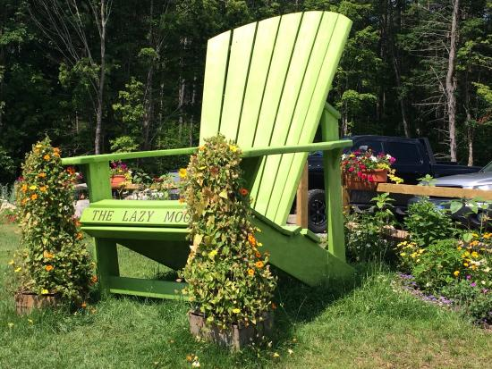 The Lazy Moose Garden Market - Picture of The Lazy Moose Garden ...